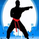 Karate Fighter Real Battle