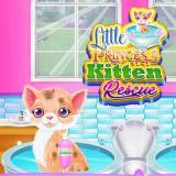 Little Princess Kitten Rescue